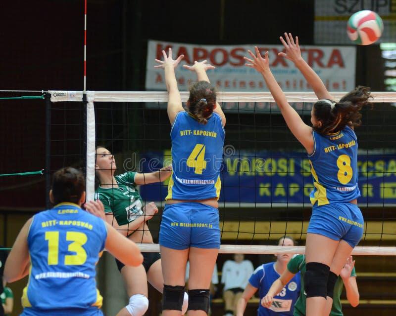 волейбол miskolc игры kaposvar стоковое изображение
