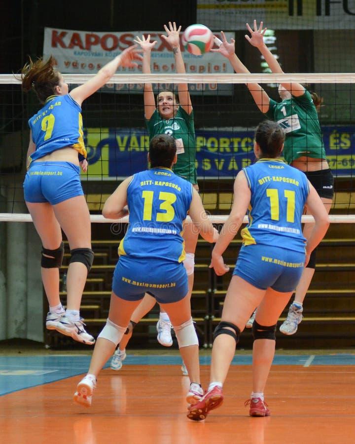 волейбол miskolc игры kaposvar стоковые изображения rf