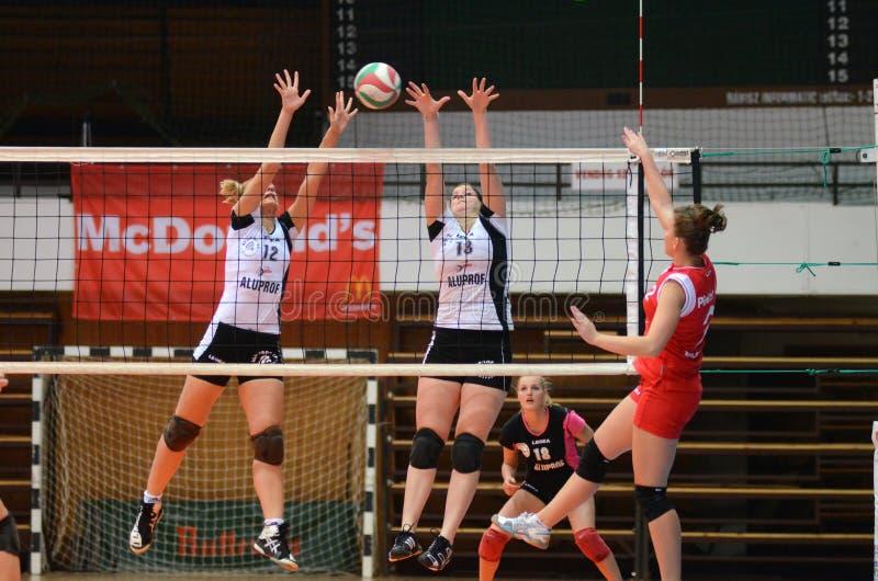 волейбол tfse игры kaposvar стоковые фотографии rf