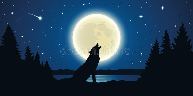 Волк завывает в полной мере луна в звездной ночи иллюстрация штока