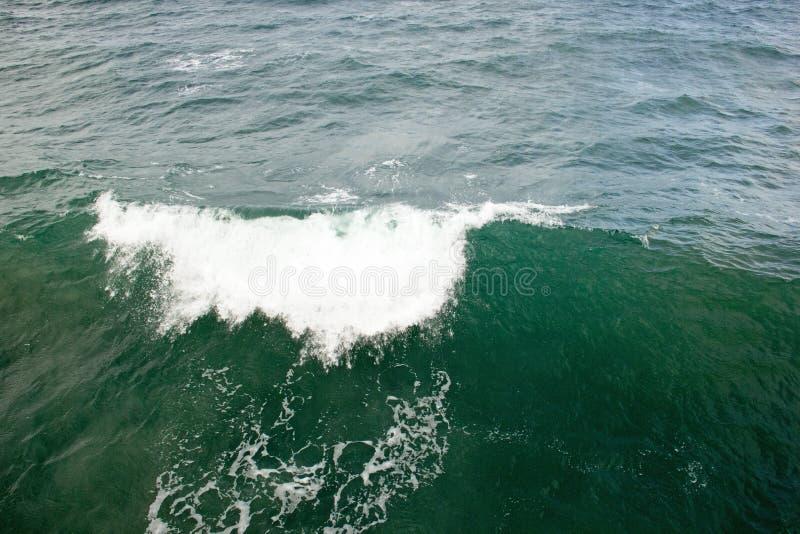 Волна здравствуйте! от Тихий Океан стоковая фотография