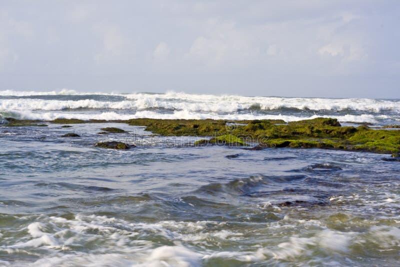 волна моря утеса стоковое фото