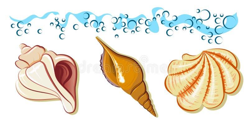 волна раковины моря собрания пляжа иллюстрация вектора