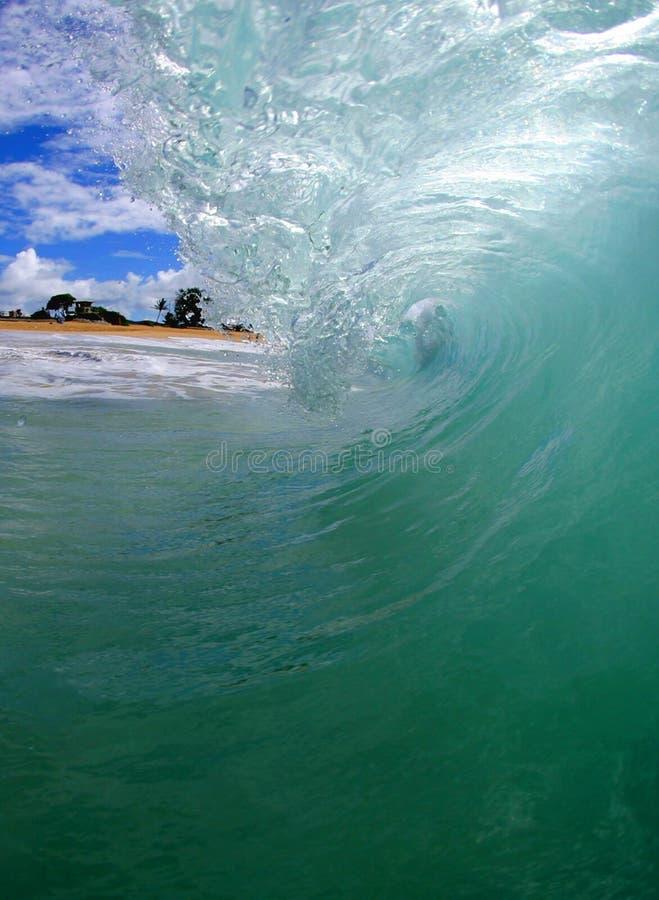волна трубопровода Гавайских островов пляжа стоковые фотографии rf