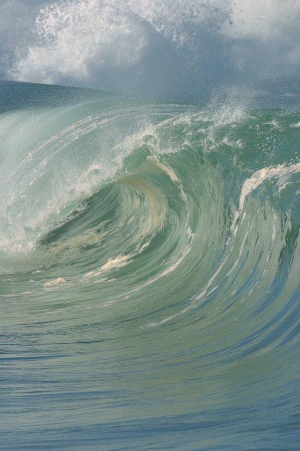 волна трубопровода Гавайских островов совершенная стоковая фотография rf