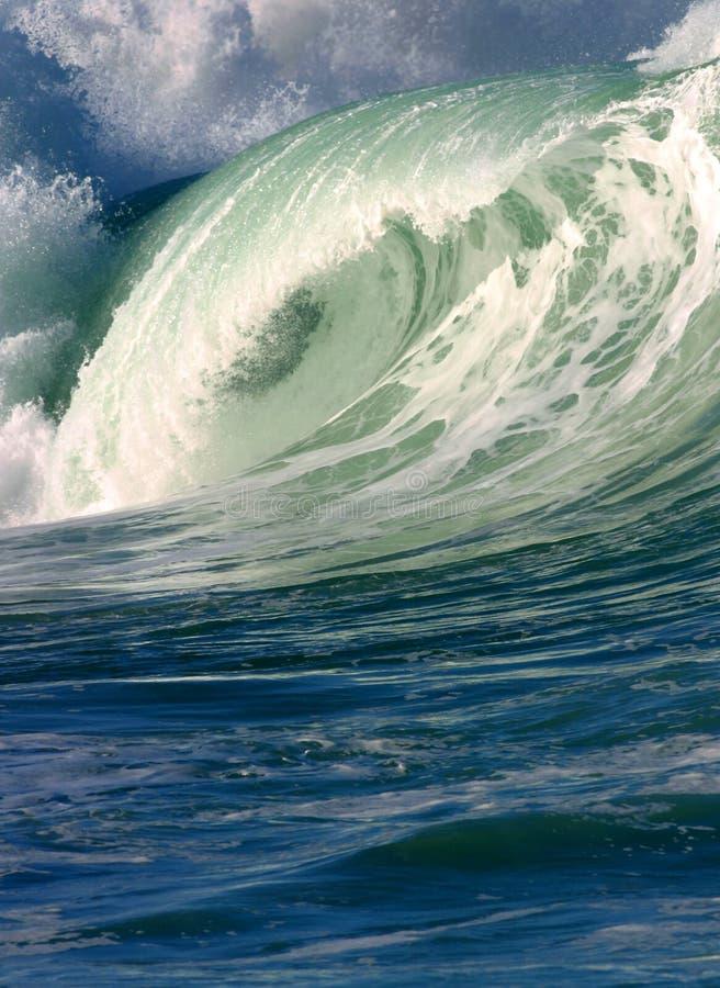 волна pacific океана занимаясь серфингом стоковое фото