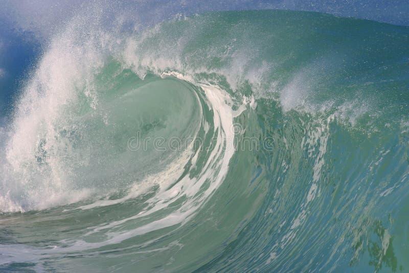 волна waimea Гавайских островов залива стоковые изображения rf