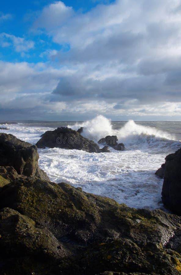 волны берега fife аварии стоковые фото