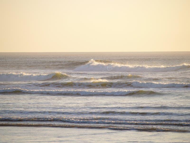 волны океана стоковое изображение rf
