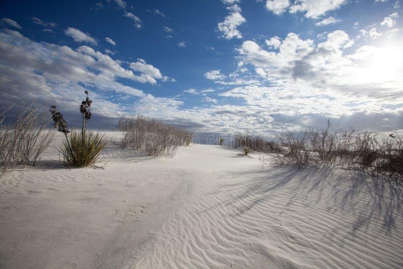 Волны песка и национальный монумент песков картин белый стоковое фото