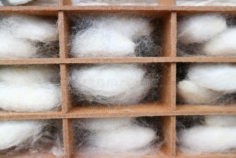волокна silk стоковая фотография rf