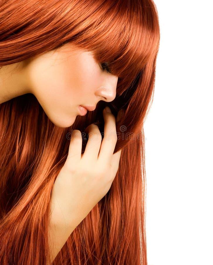 волосы здоровые стоковое изображение