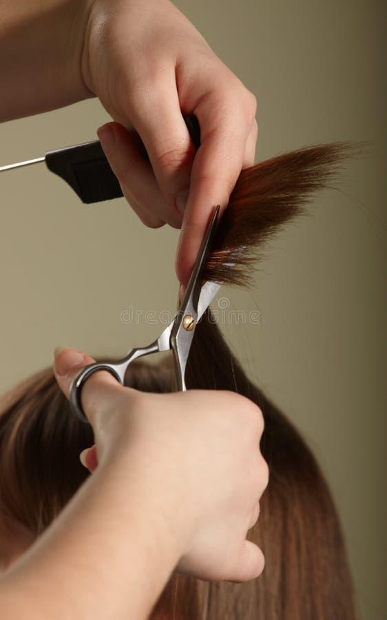 волосы стоковые фотографии rf