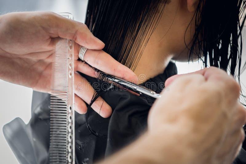 Волосы ` s клиента вырезывания парикмахера в салоне с крупным планом ножниц Используя гребень стоковые фото