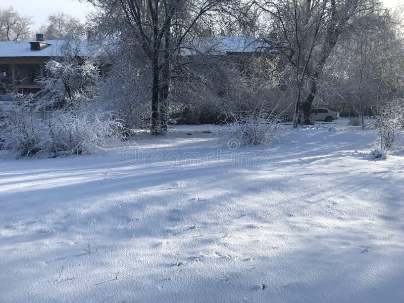 Волшебная зима в ZP стоковые фото