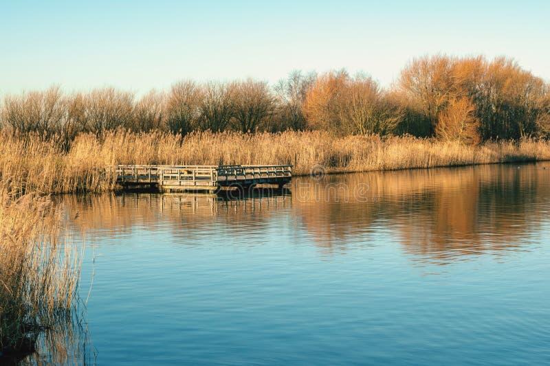 Волшебное в воскресение утром на озере стоковые изображения