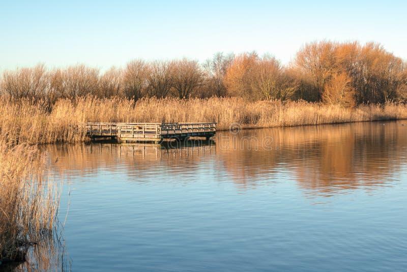 Волшебное в воскресение утром на озере стоковое фото