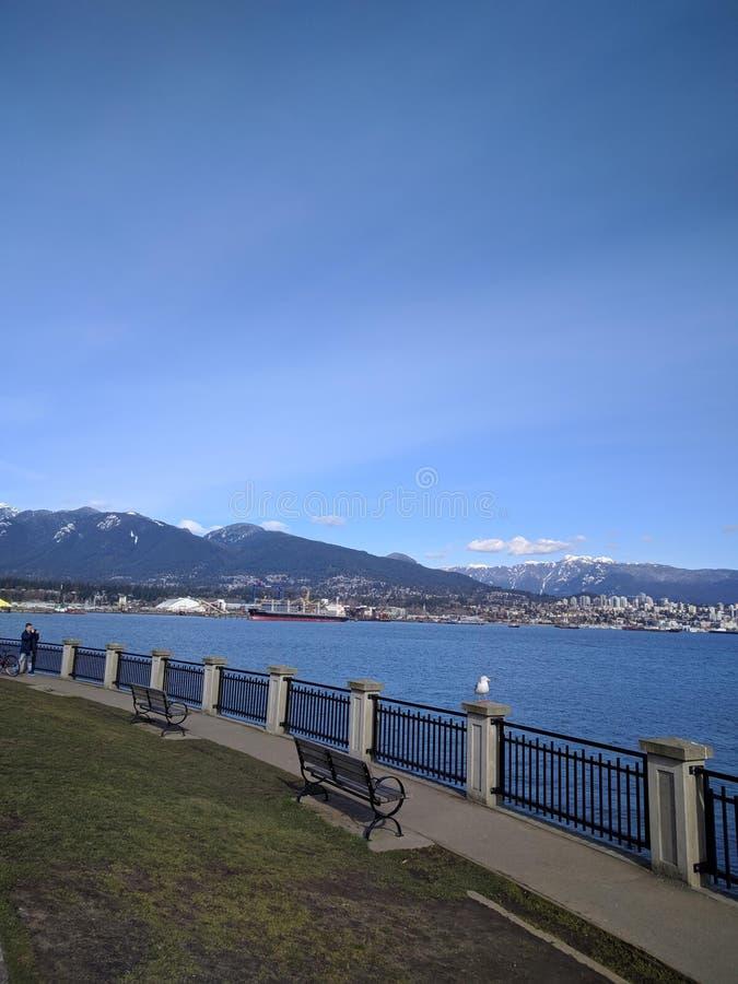 Волшебное утро в парке Стэнли, Ванкувер стоковое изображение rf