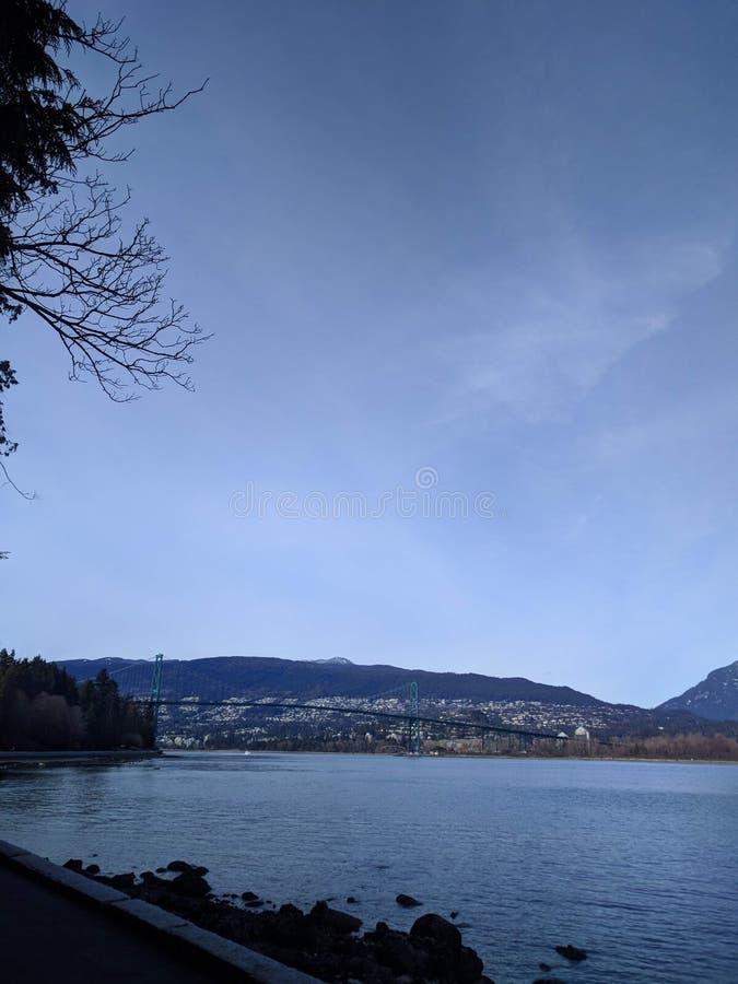 Волшебное утро в парке Стэнли, Ванкувер стоковая фотография