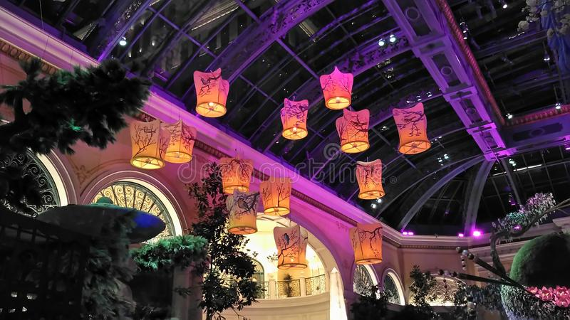 Волшебные плавая фонарики света стоковая фотография rf
