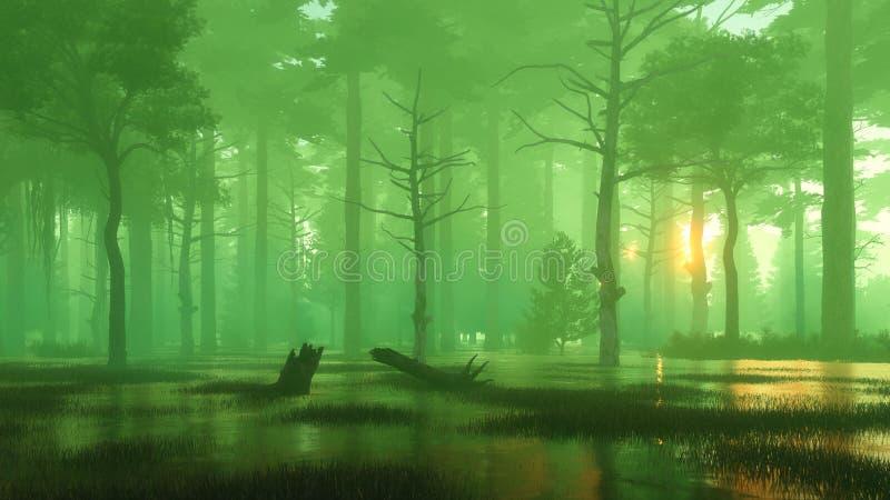 Волшебный заход солнца в темном болотистом лесе ночи иллюстрация штока