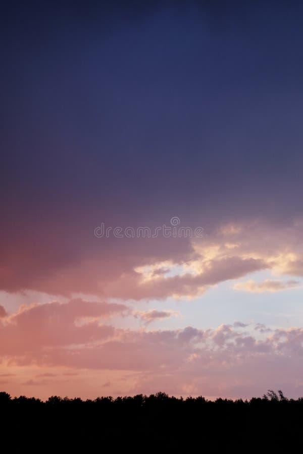 Волшебный заход солнца над силуэтом леса деревьев против, который сгорели выравниваясь неба стоковые фотографии rf