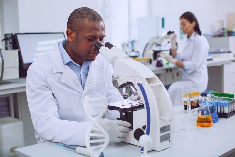 Воодушевленный мужской исследователь работая с его микроскопом стоковые изображения rf