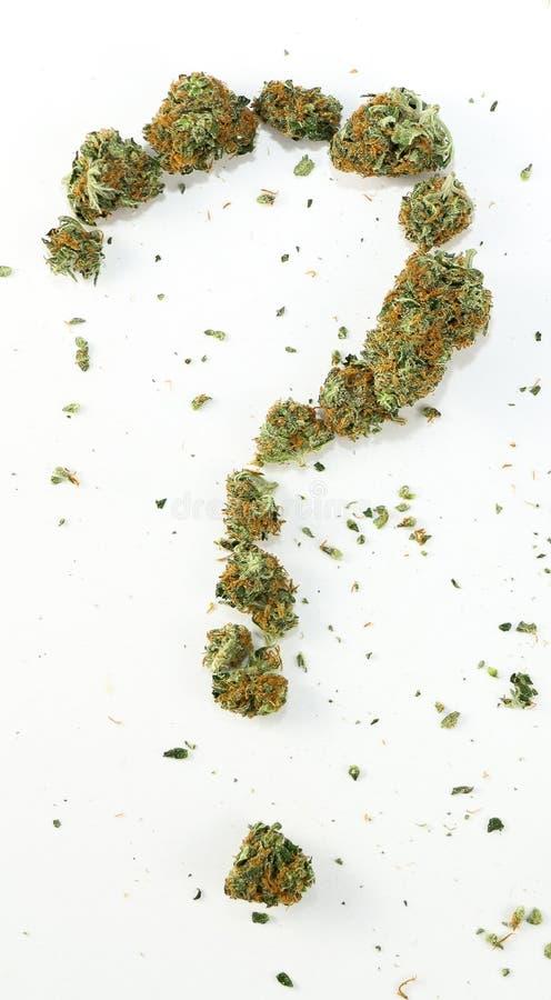 Вопросительный знак сделанный с марихуаной стоковая фотография rf