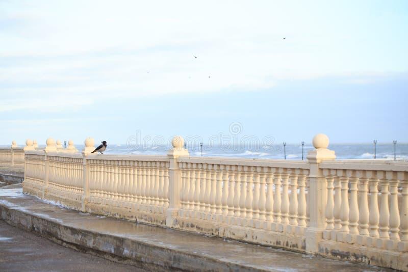 Ворона сидит на балюстраде против облачного неба стоковые изображения rf