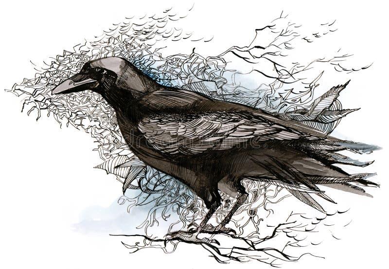 ворона иллюстрация вектора