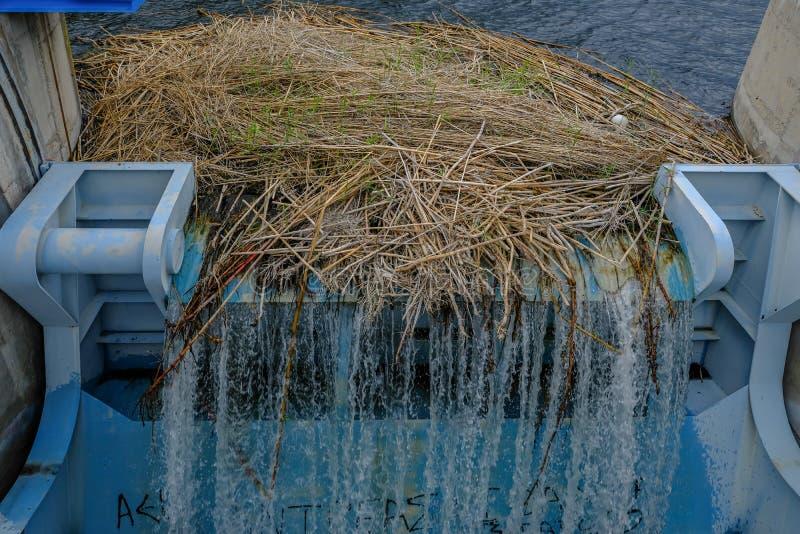 Ворота шлюза медного штейна с ключевой водой overlowing от резервуара на Germasogeia с сериями твердых частиц стоковое фото rf
