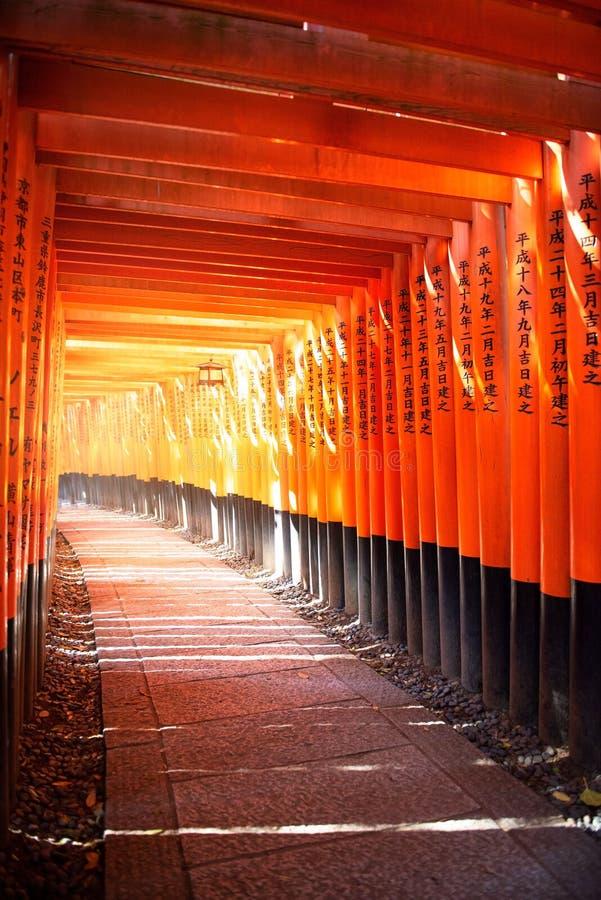 Ворота Torii в святыне Fushimi Inari, Киото Японии стоковое изображение rf