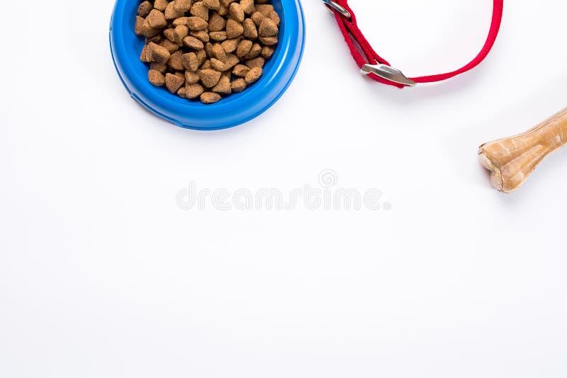 Воротник, голубой шар с питанием, поводок и деликатес для собак белизна изолированная предпосылкой стоковая фотография