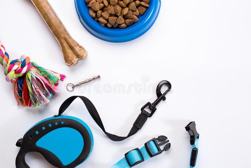 Воротник, голубой шар с питанием, поводок и деликатес для собак белизна изолированная предпосылкой стоковые изображения