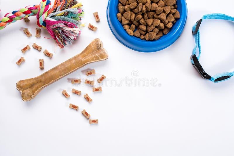 Воротник, голубой шар с питанием, поводок и деликатес для собак белизна изолированная предпосылкой стоковые фото