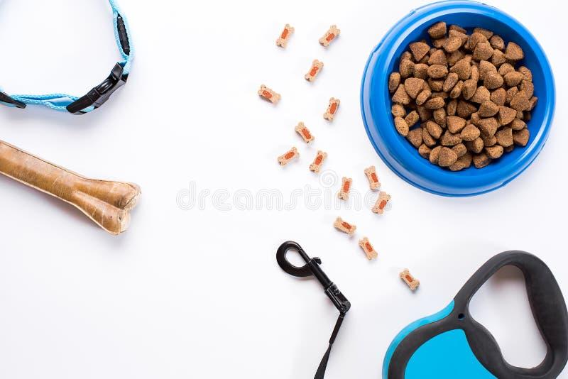 Воротник, голубой шар с питанием, поводок и деликатес для собак На белой предпосылке стоковое фото