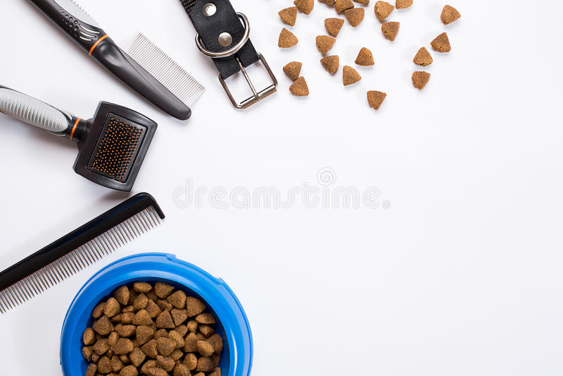 Воротник, шар с питанием, поводок, деликатес, гребни и щетки для собак На белой предпосылке стоковые изображения rf