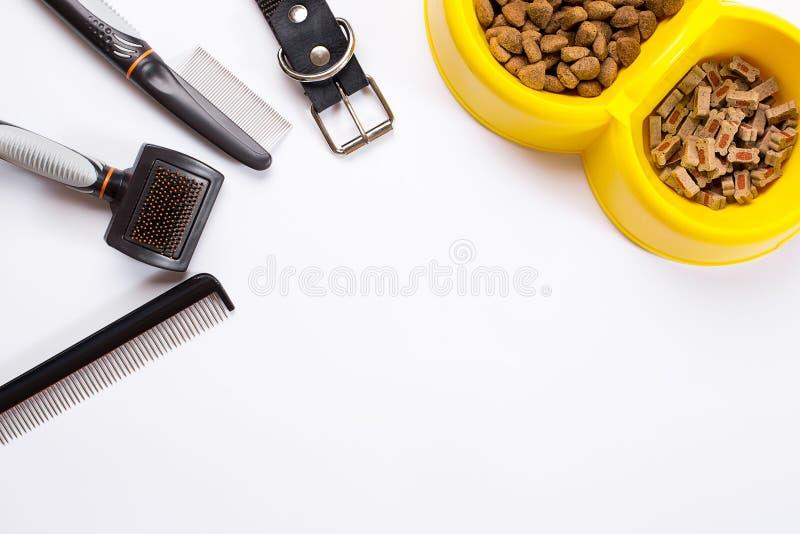 Воротник, шар с питанием, поводок, деликатес, гребни и щетки для собак На белой предпосылке стоковые фото