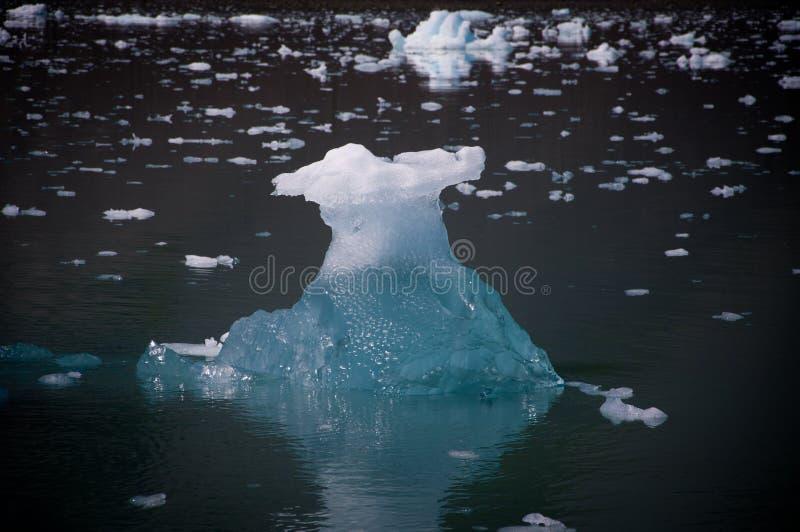 воскресение ледникового льда залива стоковые изображения rf