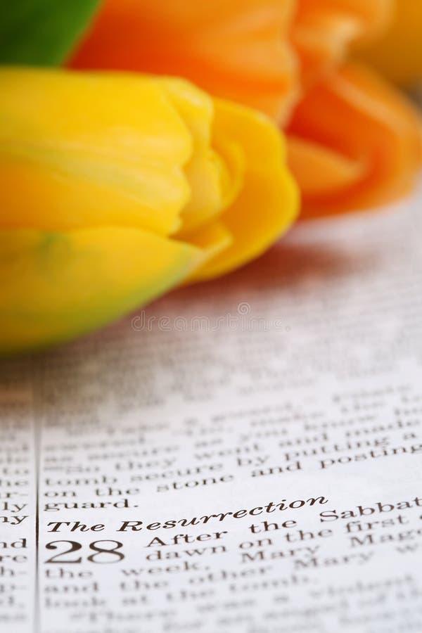 Воскресение стоковое изображение
