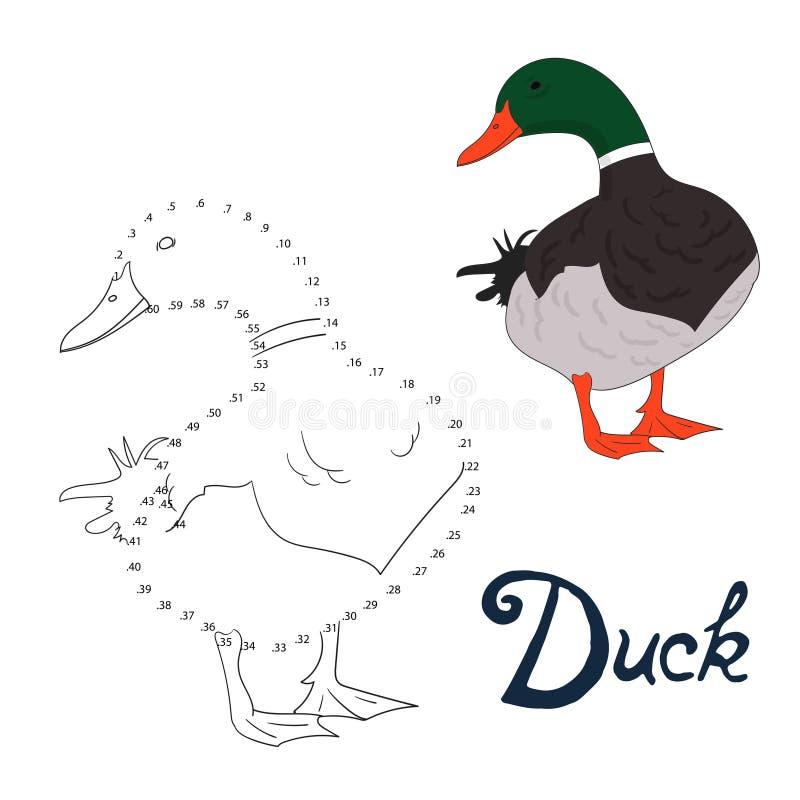Воспитательная игра соединяет точки к птице утки притяжки бесплатная иллюстрация
