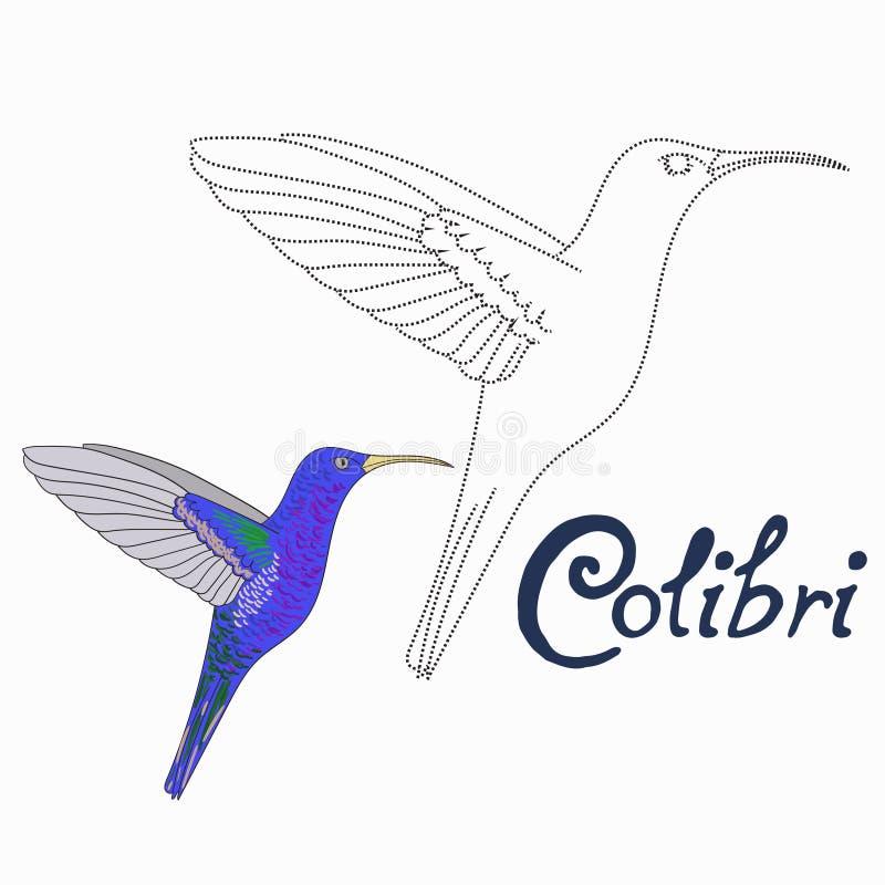 Воспитательная игра соединяет точки к птице colibri притяжки иллюстрация штока