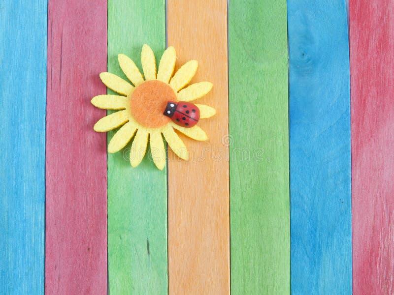 Деревянная загородка с цветком и ladybug маргаритки стоковое фото rf