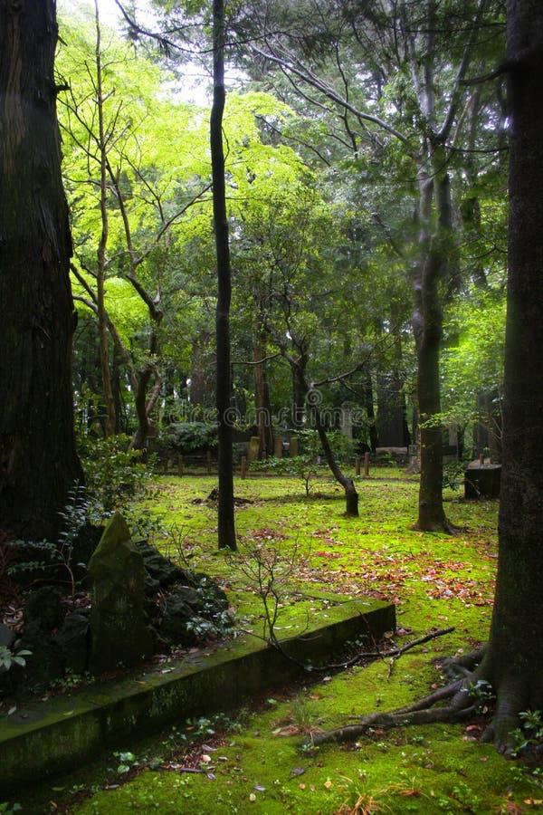 Востоковедный сад стоковое фото rf