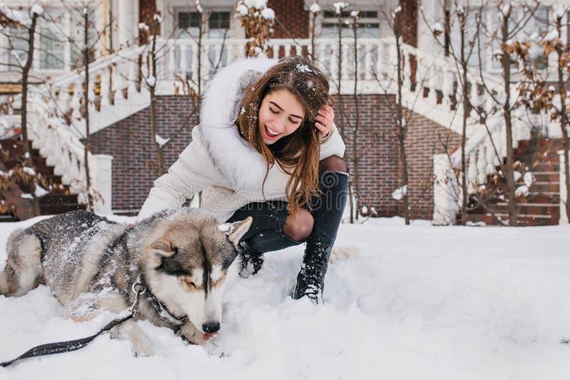 Восторженная девушка с русыми волосами смотря ее сиплых щенка и усмехаться На открытом воздухе портрет блаженной молодой женщины стоковые изображения