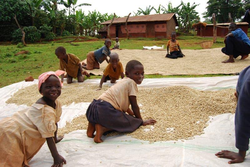 восточная Уганда стоковые фотографии rf