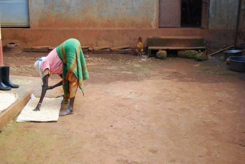 восточная Уганда стоковые изображения