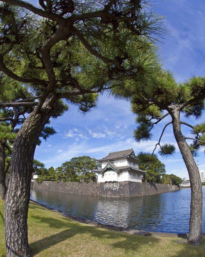 Восточный сад дворца токио имперского в Японии стоковые изображения rf