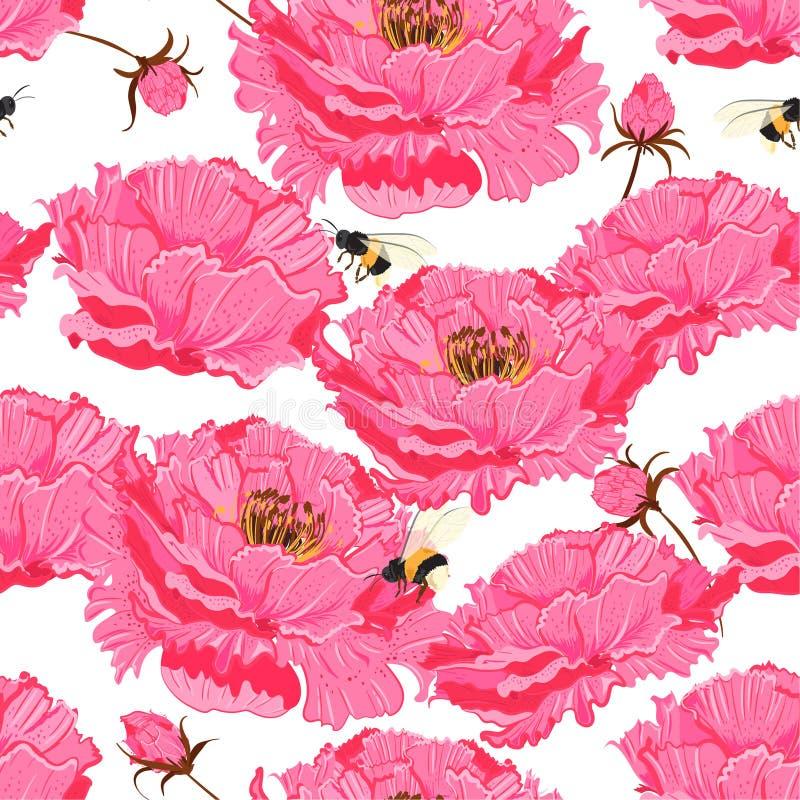 Восточный цветочный узор мягких и вектора цветеня gentel розового безшовный Японское национальное bloosom пиона и вишни цветка иллюстрация вектора