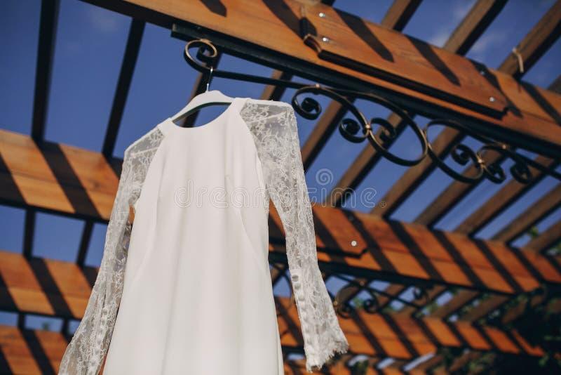 Восхитительное платье свадьбы стоковое изображение rf